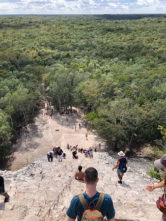 Coba, Tulum and Cenote Swim: Amazing view of the jungle from the pyramid top
