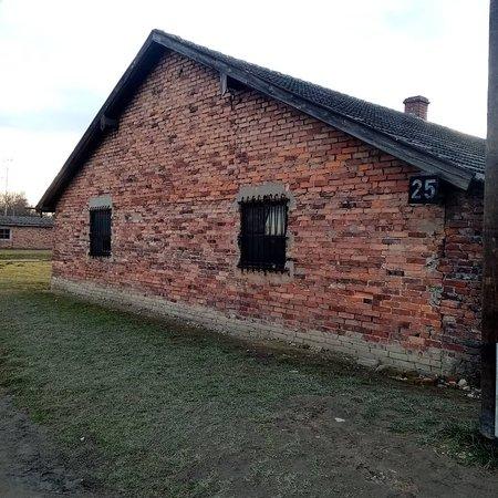תמונה מAuschwitz-Birkenau Camp Full-Day Guided Tour from Krakow