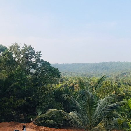 Kuthuparamba, India: Homestay