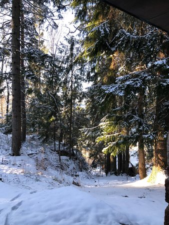 Holmsbu, Noruega: The Gallery in the woods, wintertime