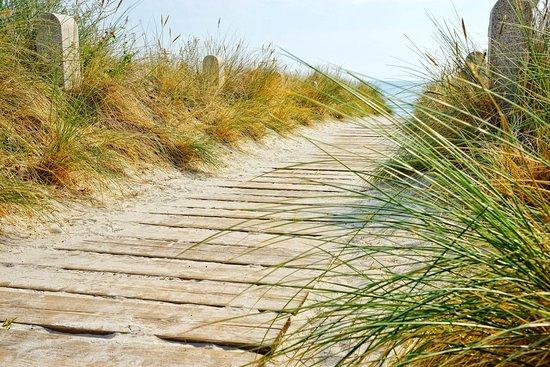 Strandaufgang durch die Dünen zur Ostsee in Juliusruh auf der Insel Rügen