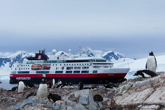 Paradise Harbour: Antarktisimpression