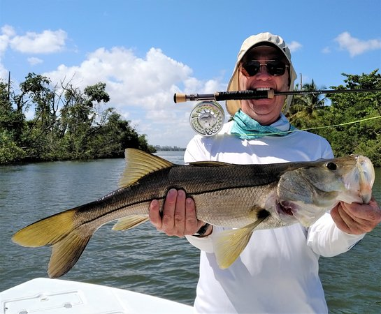 Snook on the fly