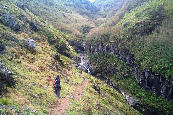 ウォーキングツアー:Ponta DelgadaのRibeira Fundaと…