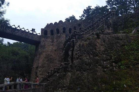 Visite guidée privée de Chandigarh