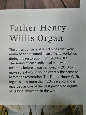 about the organ