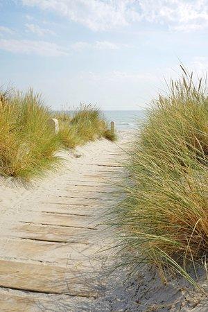 Strandaufgang durch die Dünen zur Ostsee bei Juliusruh auf Rügen