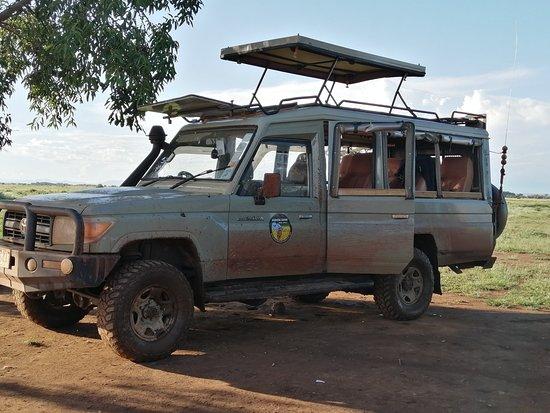 Tsavo National Park East, Kenya: Agenzia safari vera Africa