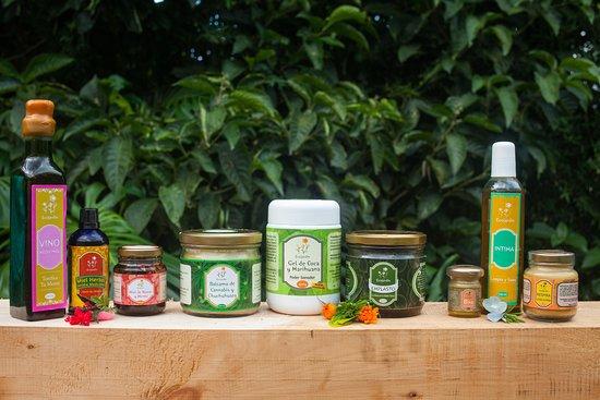 Ecojardín Medicinal