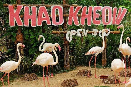 Foto Khao Kheow Open Zoo Ticket Pattaya