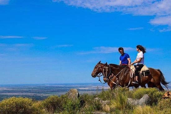 Horseback Riding In Cordoba