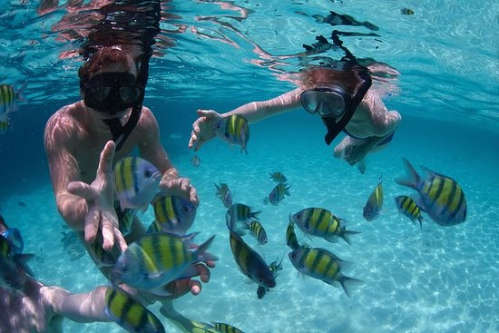Bali Best SNORKELING at BLUE LAGOON and...