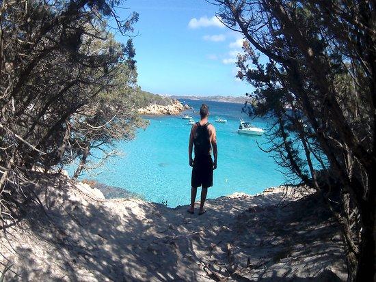Quartu Sant'Elena, Italia: Questo sono io in una delle meravigliose spiagge della Sardegna.