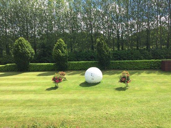 Golf ball art