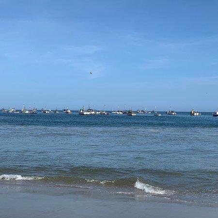 Playa Los Organos