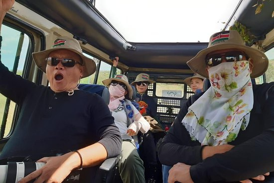 Perfect Wilderness Tours and Safaris