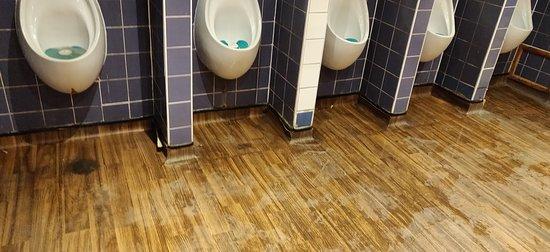 Disgusting toilets