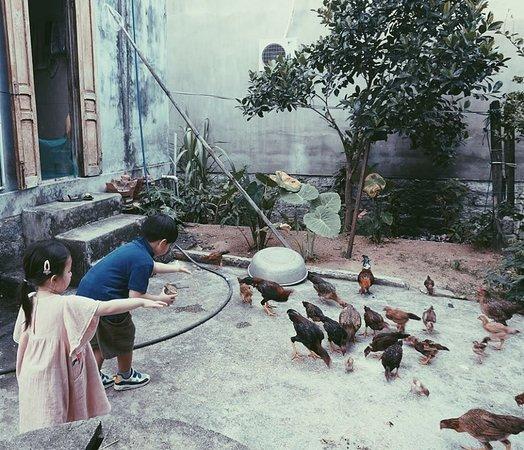 Cham Khanh Hoa