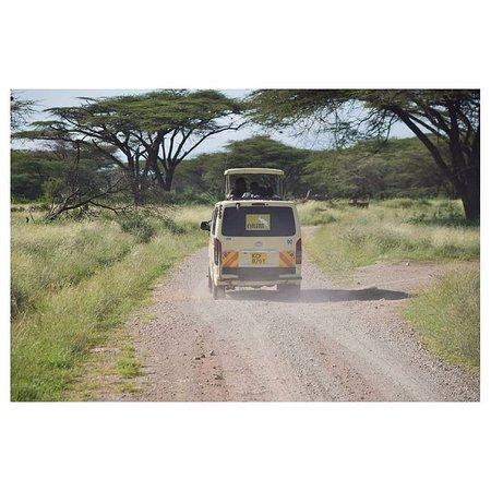 Samburu National Reserve, Keňa: Festive Season Group Trip to Samburu Simba