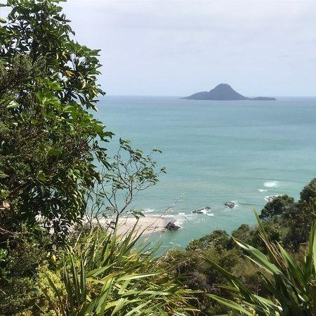 Nga Tapuwae o Toi Walkway