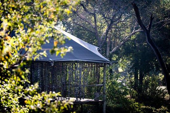 Toka Leya Camp
