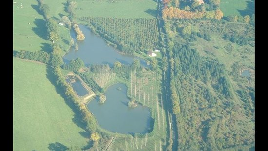 Thiel-sur-Acolin, France: 8H de terrain entièrement clos avec3 étangs