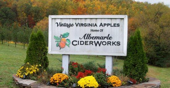Vintage Virginia Apples