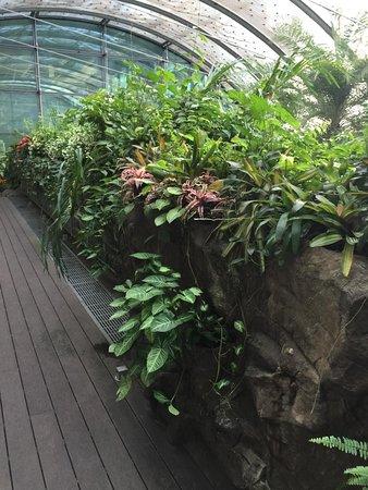Singapur, Singapur: Singapore