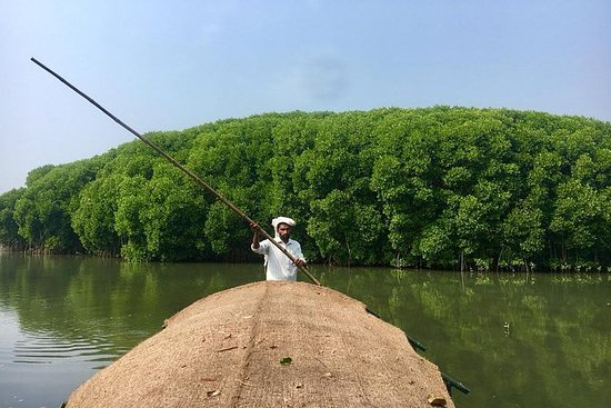 Nos Mangues: Calicut Mangrove Trail by Tyndis