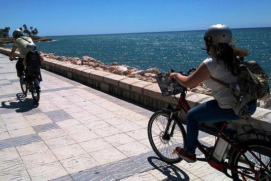Package E-bike tour and rental