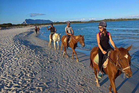 Cagliari: tour a caballo desde Chia