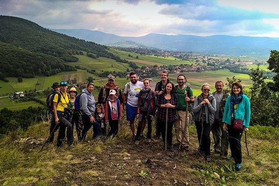 De Brasov: aventure safari au pays des volcans