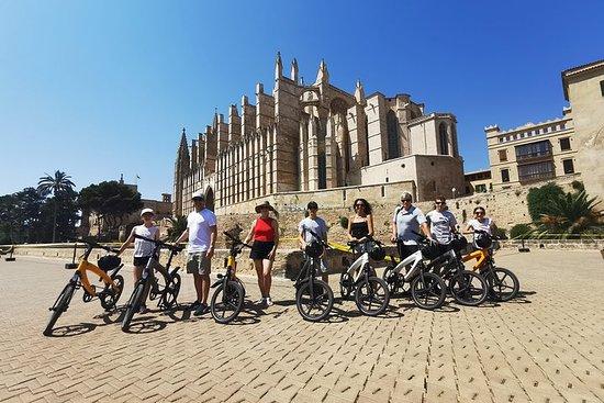 パルマデマリョルカのクルーズターミナル3時間Eバイクツアー