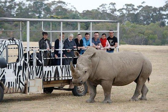 Safari hors route au zoo de Werribee...