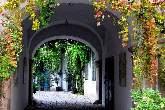 Hidden Gems in Vienna Inner City Private Walking Tour – fénykép