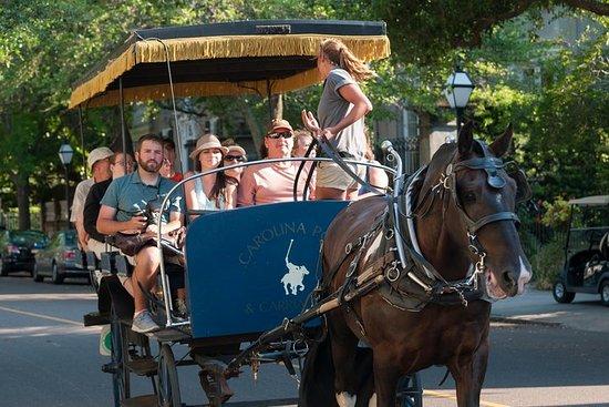 Tour privado en carruaje histórico de...