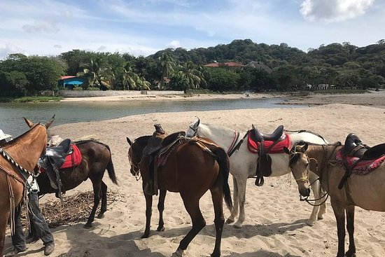 Horseback riding tour in San juan del...