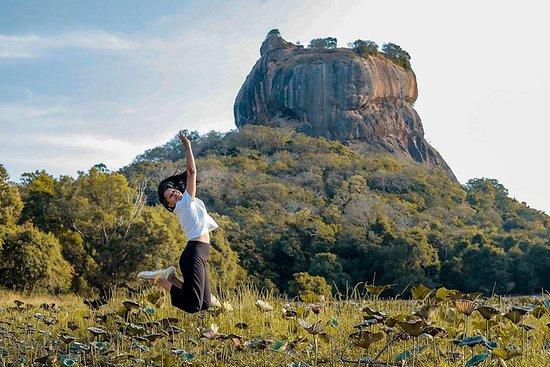 Sigiriya & Dambulla Day Excursion From...