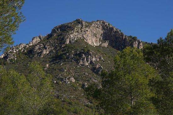 Omvisning på Pico el Cielo