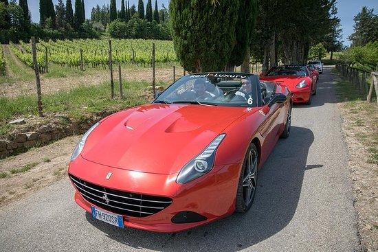 Langhe / Barolo / Alba - Tour in Ferrari