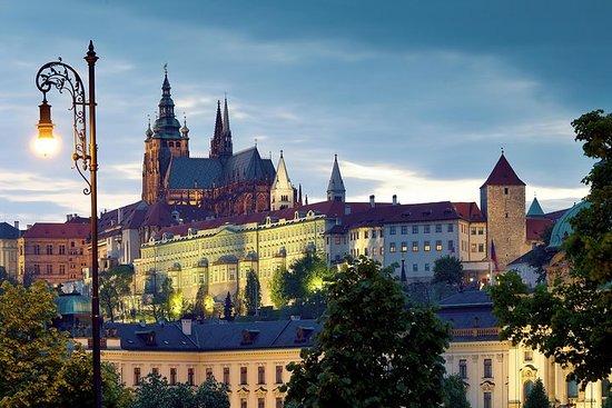 プライベートプラハ城とロブコビツ宮殿半日ツアー