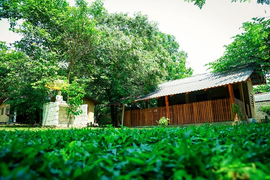 Nethra Ayurvedic Spa & Resort