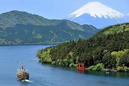 Tour privato di un'intera giornata di Hakone con guida con licenza