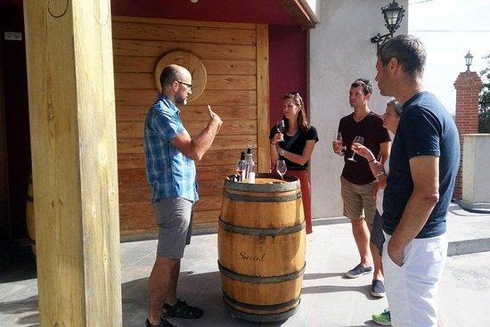 PROEF en GAAN! 5 FIETS- EN WIJNTOUR - Bezoek 5 wijnhuizen met ...