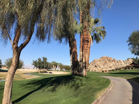 SilverRock Resort: Loaded with Palm Trees
