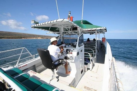 Snorkel Vessel 32 Guests on Private...