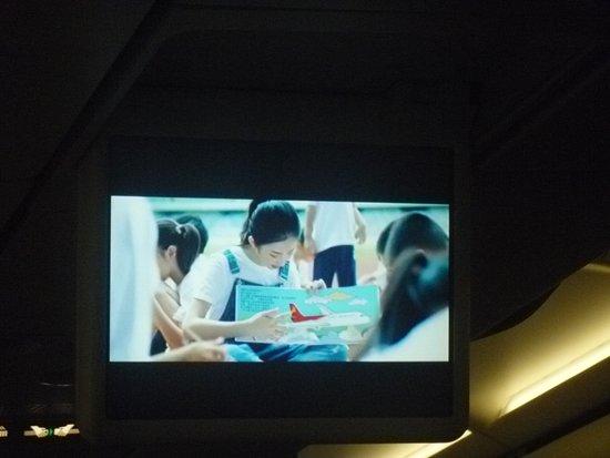 Shenzhen Airlines: ZH8064