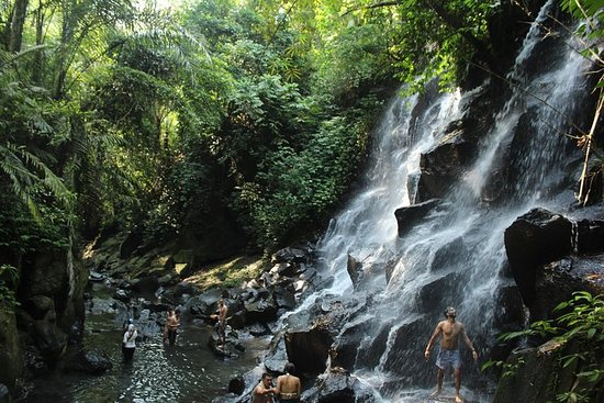 Private Waterfall Tour Feature Tukad...