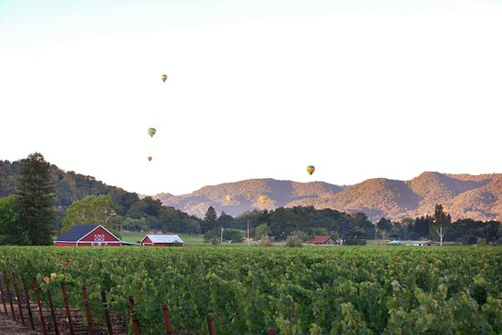 Balloons over our Stags Leap District property.