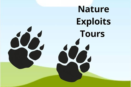 ‪Nature exploits tours‬